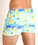LASC Malibu Swim Shorts Iced Lemonade, view 4