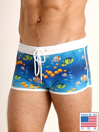 Model in fish paradise LASC Square Cut Swim Trunk